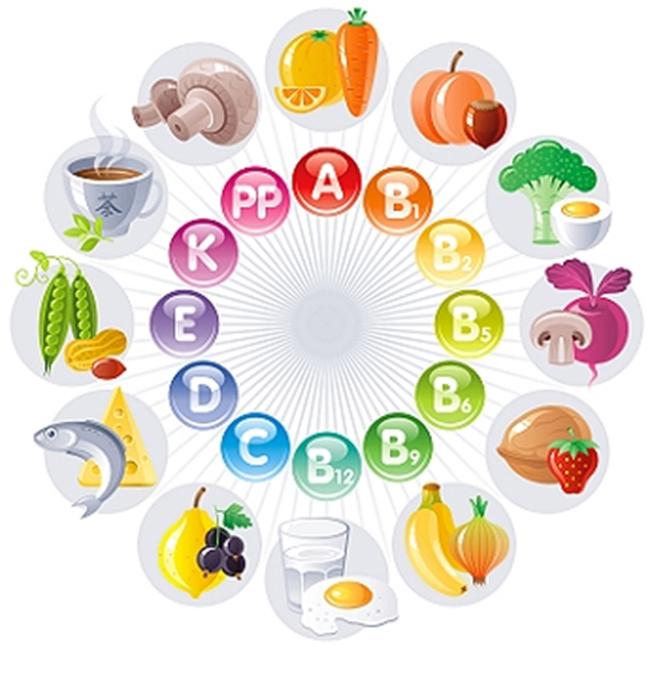 Vitaminlerİle ilgili renkli şema